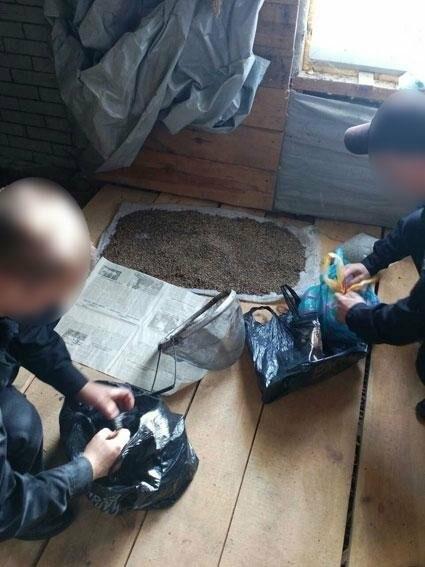 У жителя Черниговщины нашли бидон марихуаны, фото-2