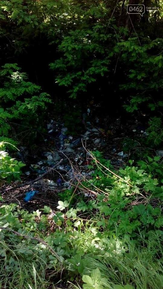 В Чернигове обнаружили две стихийные свалки отходов, фото-1