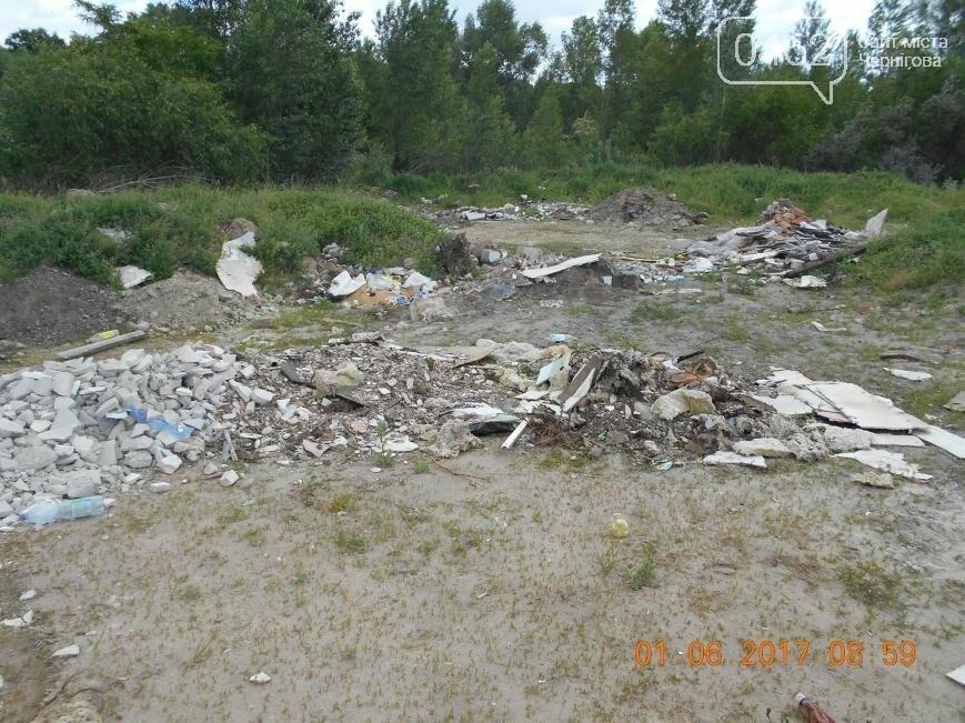 В Чернигове обнаружили две стихийные свалки отходов, фото-8