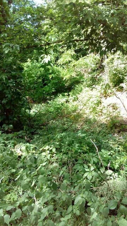В Чернигове обнаружили две стихийные свалки отходов, фото-3