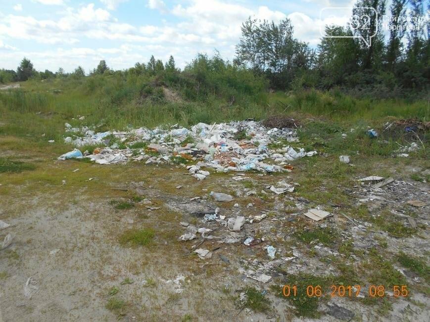 В Чернигове обнаружили две стихийные свалки отходов, фото-6