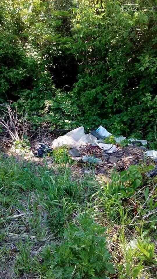 В Чернигове обнаружили две стихийные свалки отходов, фото-4