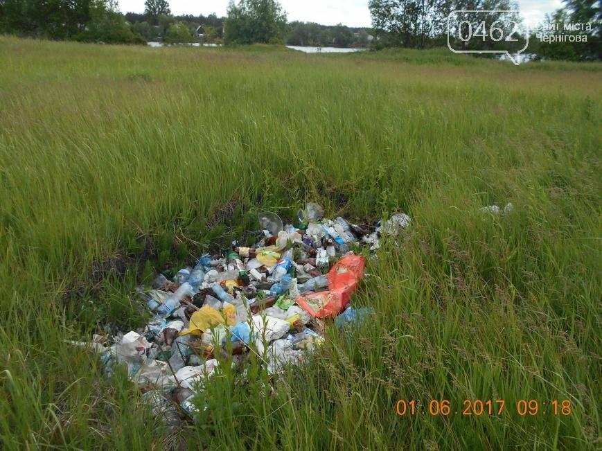 В Чернигове обнаружили две стихийные свалки отходов, фото-5