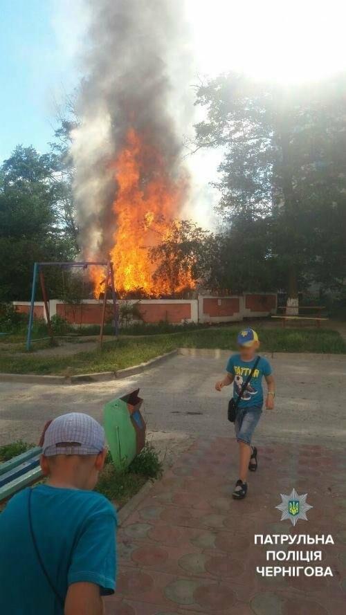 Прибыв на пожар, черниговские патрульные обнаружили теплицу с коноплей, фото-2