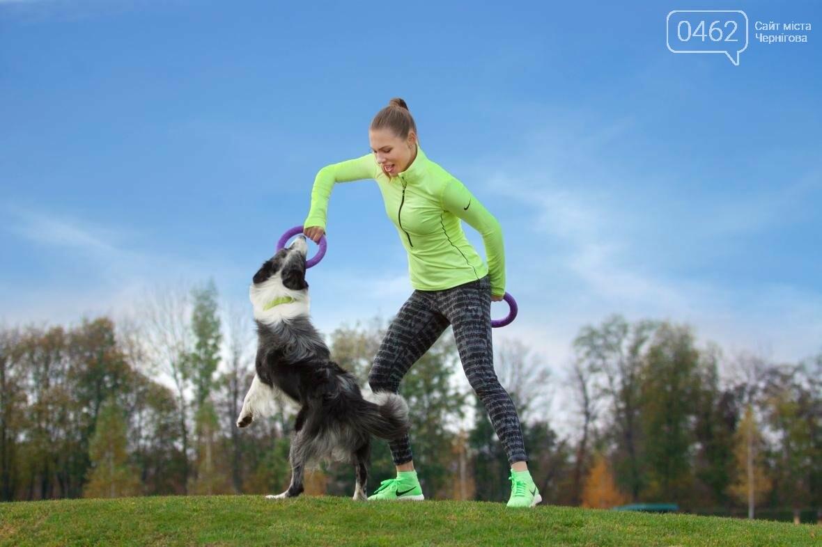 Черниговская компания положит начало первым в мире Олимпийским играм для животных, фото-1