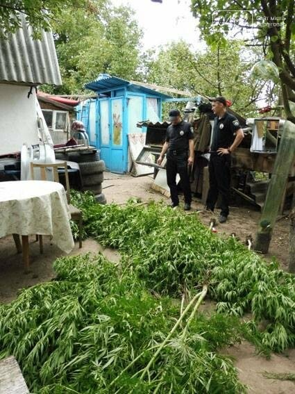 На Черниговщине раскрыли нарколабораторию и оружейное производство в одном хояйстве, фото-5