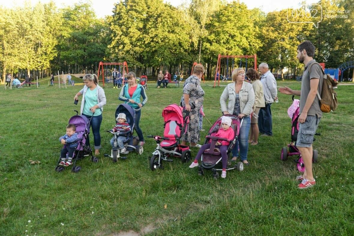 Черниговцы создали защитный круг для Березовой рощи , фото-12