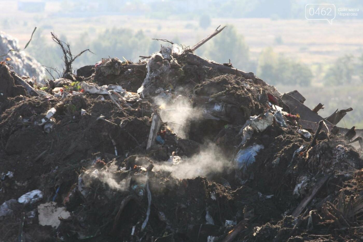 В Чернигове тушили полигон ТБО, фото-1