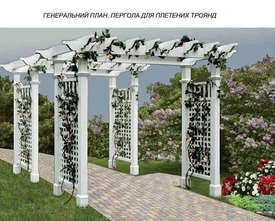 Еще один проект реконструкции зеленой зоны в Чернигове. Теперь – возле РАГСа, фото-1