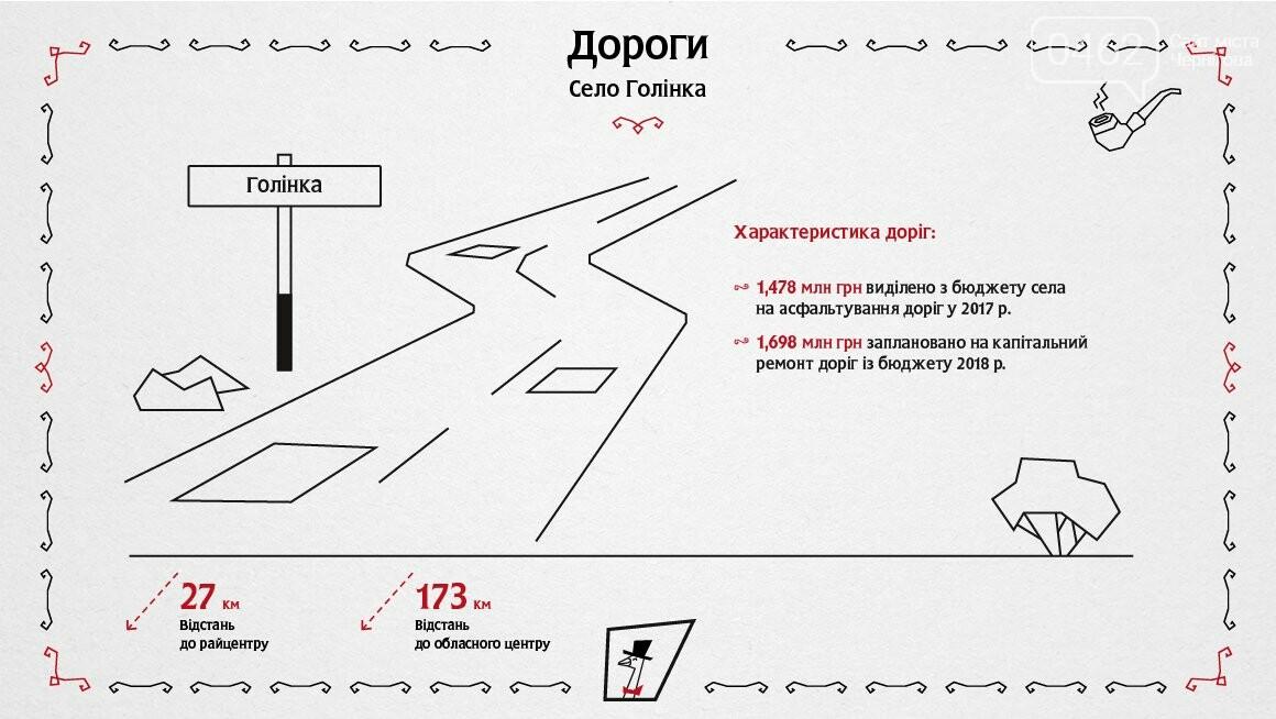 Село на Черниговщине подробно проинспектировали столичные ревизоры, фото-10
