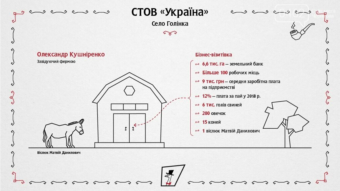 Село на Черниговщине подробно проинспектировали столичные ревизоры, фото-3