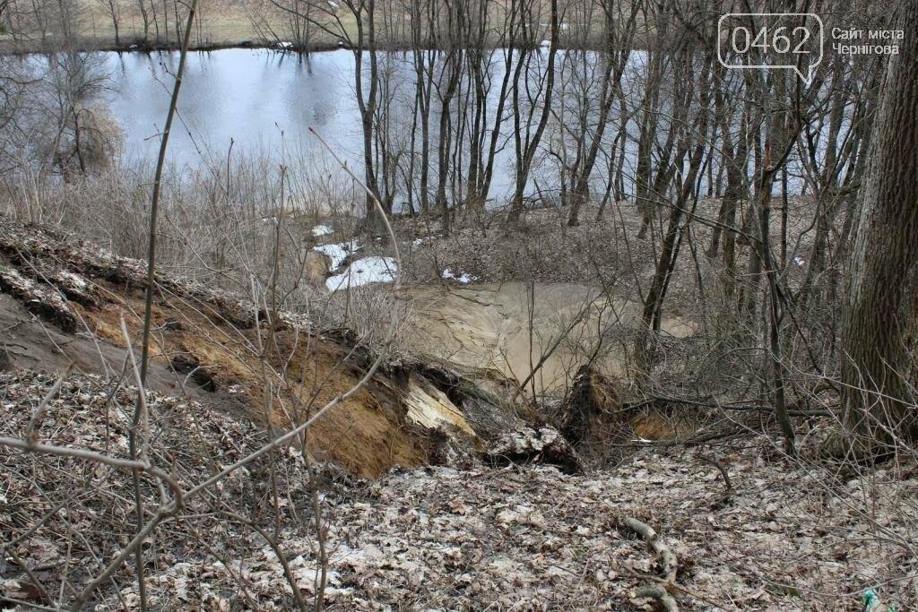 Альтанка Глибова в Черниговской области сползает в пропасть. Чиновники успокаивают, фото-6