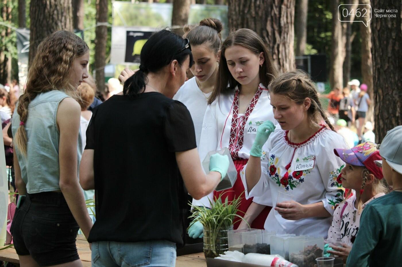 В Чернигове состоялся экологический фестиваль, фото-4