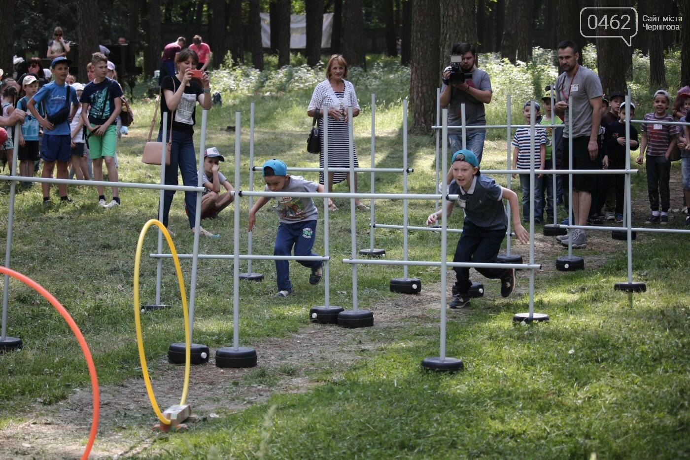 В Чернигове состоялся экологический фестиваль, фото-6