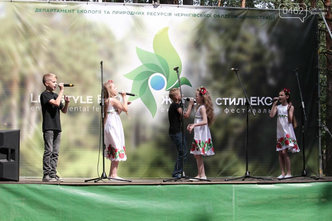 В Чернигове состоялся экологический фестиваль, фото-3