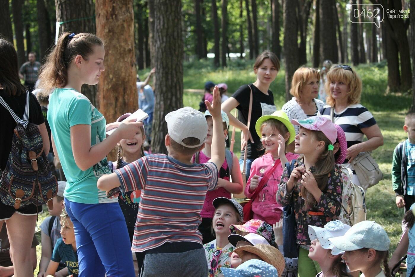 В Чернигове состоялся экологический фестиваль, фото-1