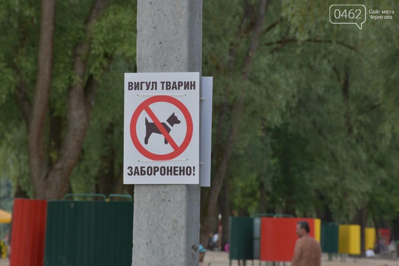 В Чернигове открыли пляжный сезон, фото-1