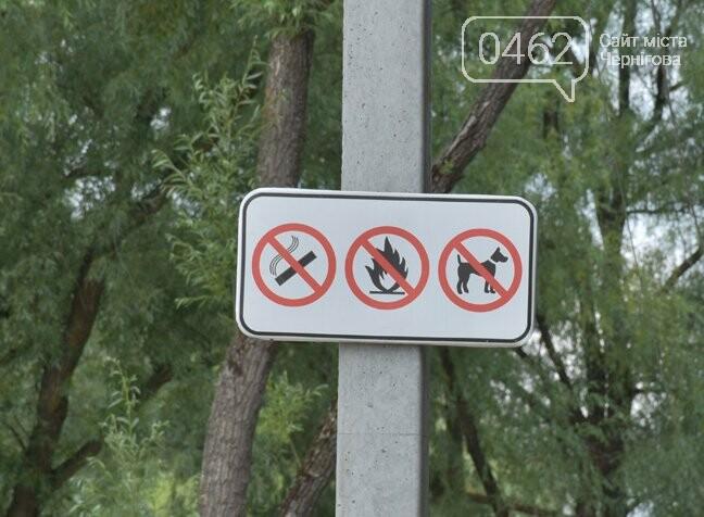 В Чернигове открыли пляжный сезон, фото-3