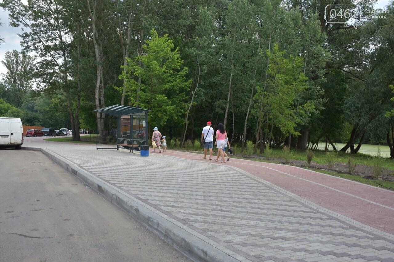 В Чернигове открыли пляжный сезон, фото-34