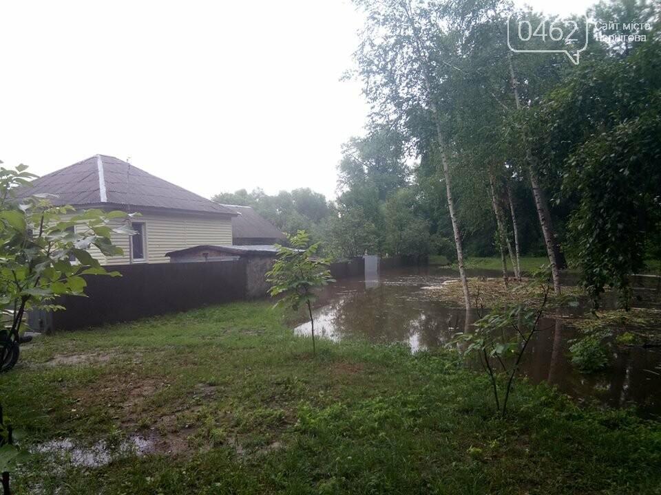 Черниговские улицы утонули, фото-16