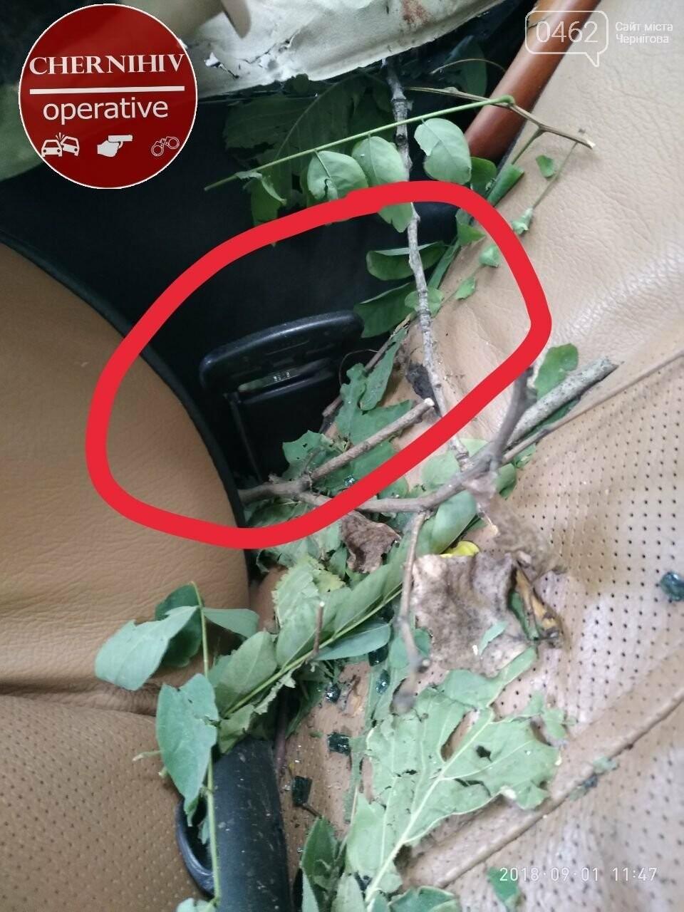 На Чернігівщині Range Rover з'їхав у кювет, є загиблі, фото-1
