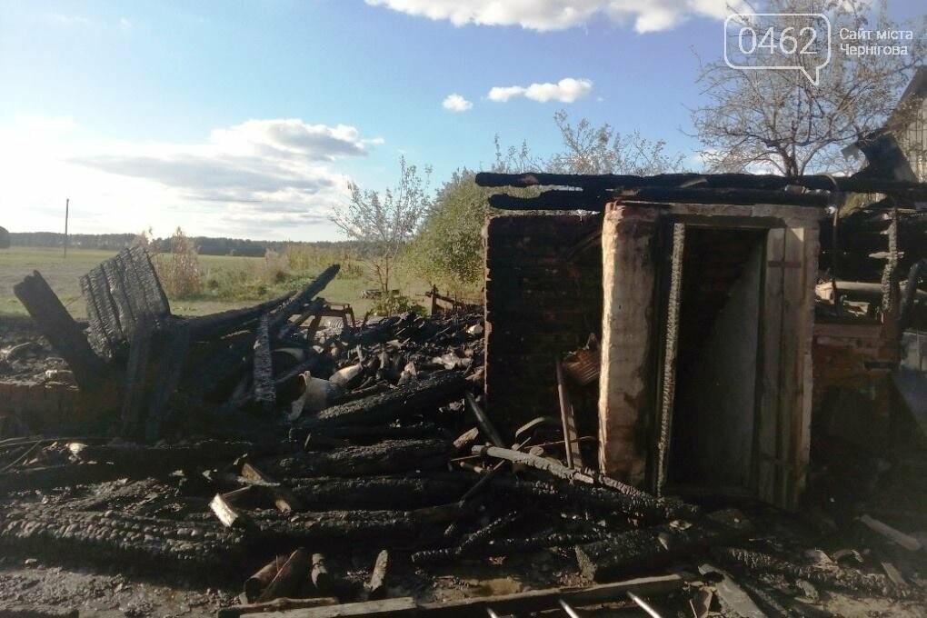 За минулу добу на Чернігівщині ліквідовано 9 пожеж, фото-1