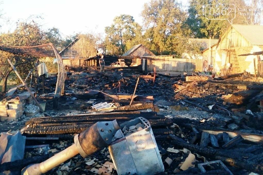 За минулу добу на Чернігівщині ліквідовано 9 пожеж, фото-3