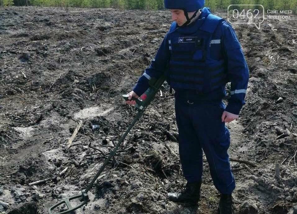 В Черниговском районе обнаружили два снаряда времен Второй мировой войны, фото-1