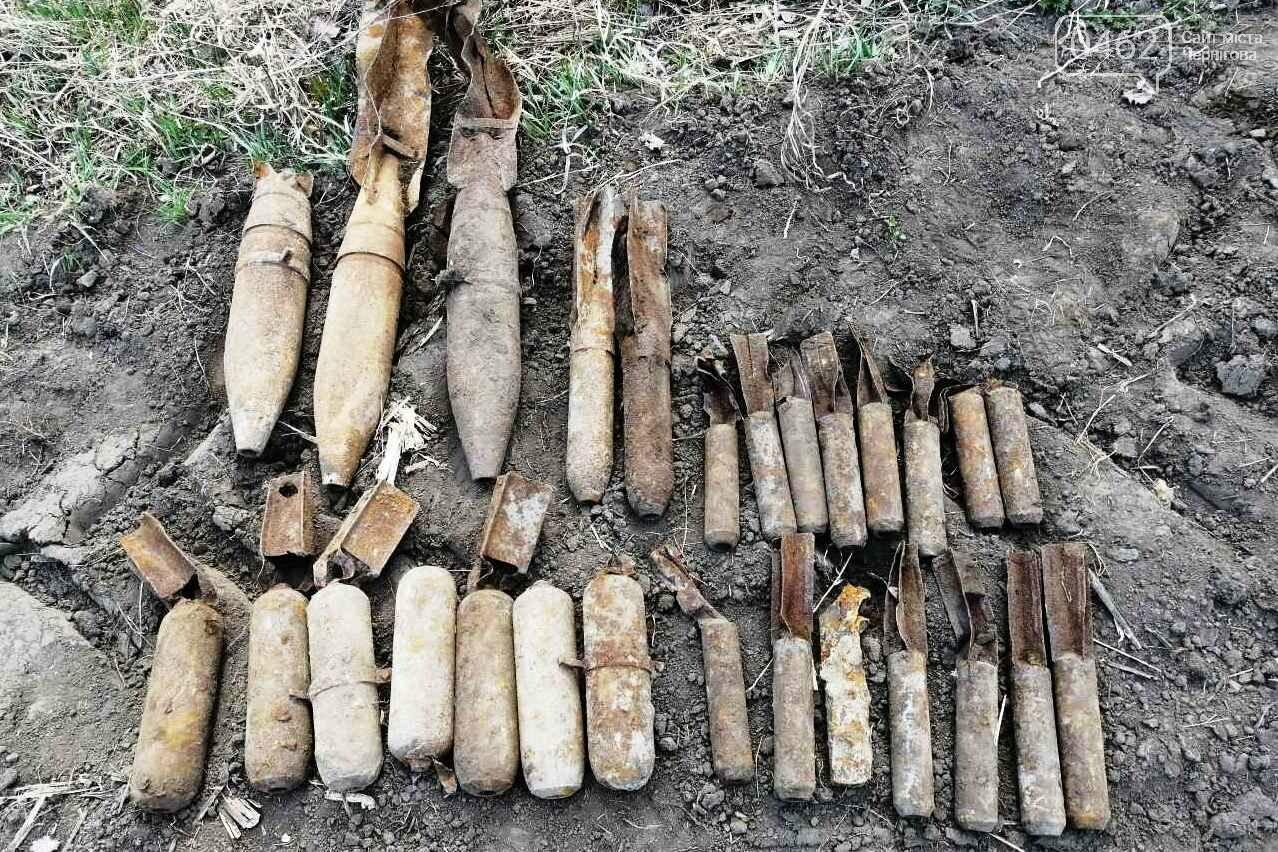 Мини-склад боеприпасов времен Второй мировой войны обнаружили на Черниговщине, фото-4