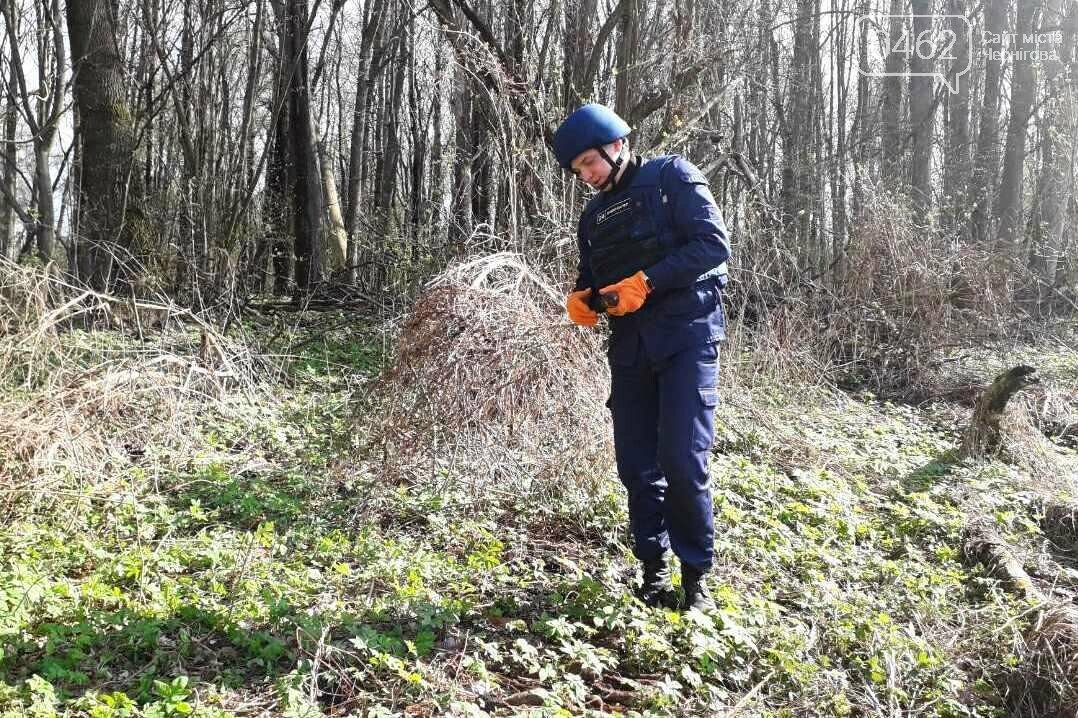 Під Черніговом знайшли арсенал боєприпасів з часів Другої світової, фото-6