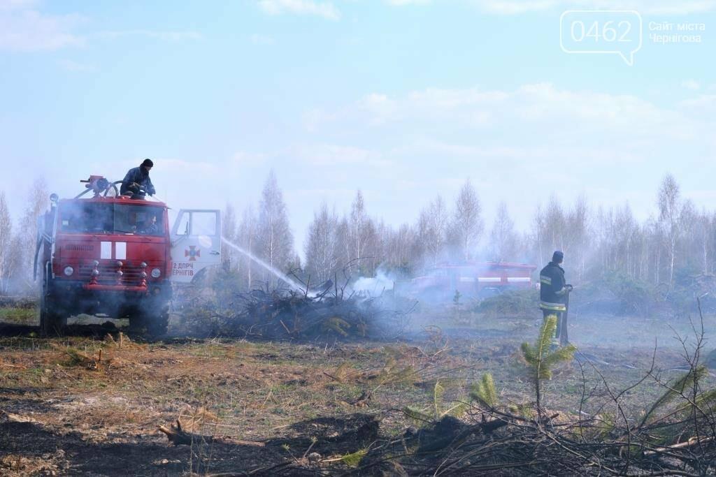 Більше 25 гектарів сухої трави знову горіло на Чернігівщині, фото-1