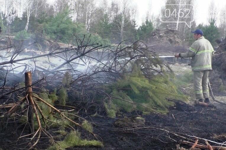 Більше 25 гектарів сухої трави знову горіло на Чернігівщині, фото-2