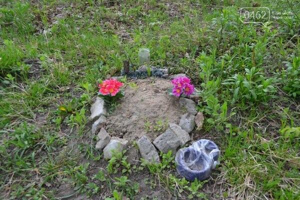 Чернигов стихийный - в городе внезапно появились кладбище домашних животных и свалка, фото-18