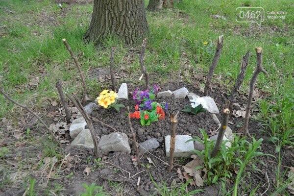 Чернигов стихийный - в городе внезапно появились кладбище домашних животных и свалка, фото-22