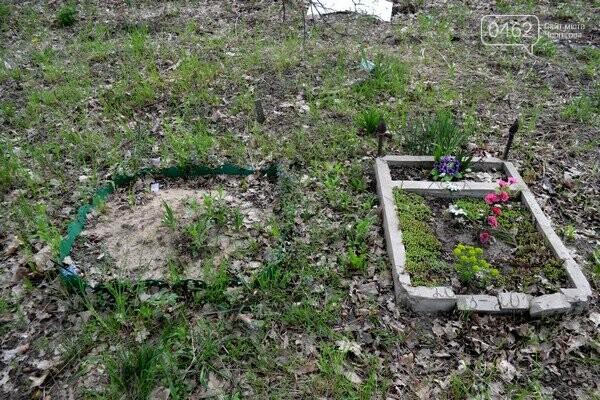 Чернигов стихийный - в городе внезапно появились кладбище домашних животных и свалка, фото-24