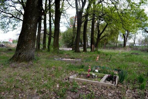 Чернигов стихийный - в городе внезапно появились кладбище домашних животных и свалка, фото-25