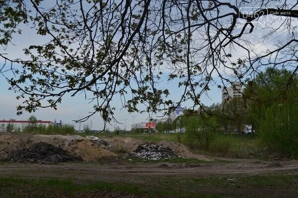 Чернигов стихийный - в городе внезапно появились кладбище домашних животных и свалка, фото-6