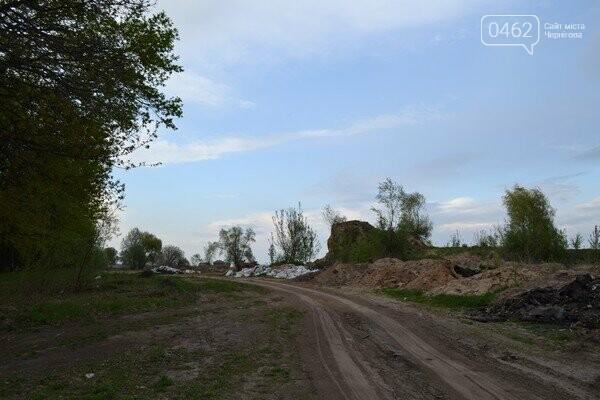 Чернигов стихийный - в городе внезапно появились кладбище домашних животных и свалка, фото-3