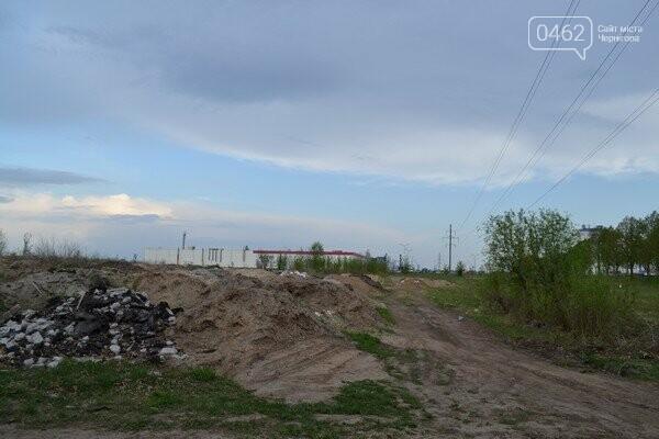 Чернигов стихийный - в городе внезапно появились кладбище домашних животных и свалка, фото-4
