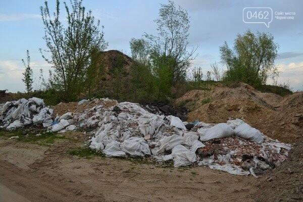 Чернигов стихийный - в городе внезапно появились кладбище домашних животных и свалка, фото-7