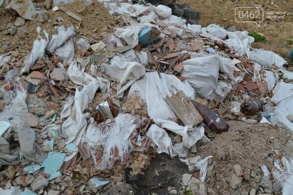 Чернигов стихийный - в городе внезапно появились кладбище домашних животных и свалка, фото-8