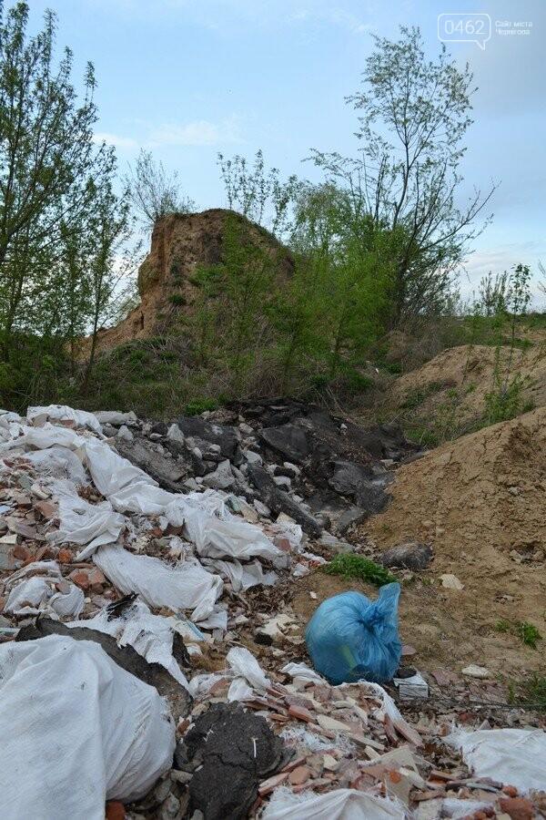 Чернигов стихийный - в городе внезапно появились кладбище домашних животных и свалка, фото-9