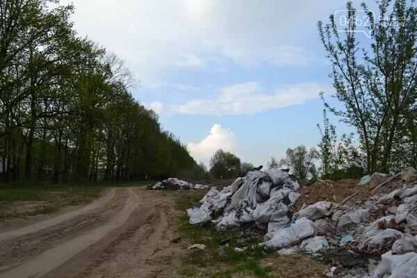 Чернигов стихийный - в городе внезапно появились кладбище домашних животных и свалка, фото-10