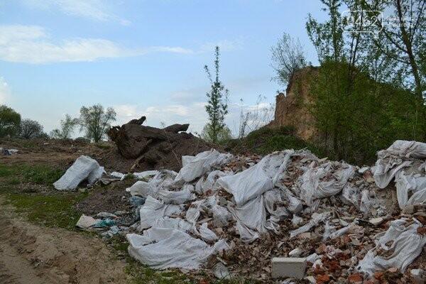 Чернигов стихийный - в городе внезапно появились кладбище домашних животных и свалка, фото-11