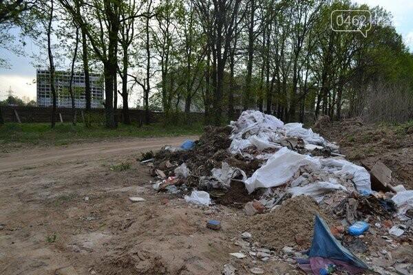 Чернигов стихийный - в городе внезапно появились кладбище домашних животных и свалка, фото-14