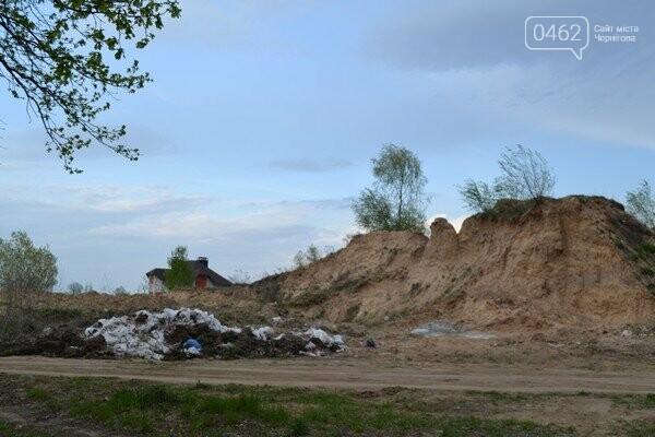 Чернигов стихийный - в городе внезапно появились кладбище домашних животных и свалка, фото-15