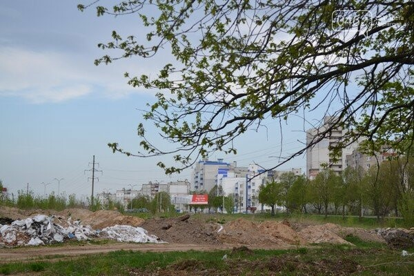 Чернигов стихийный - в городе внезапно появились кладбище домашних животных и свалка, фото-16