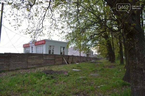 Чернигов стихийный - в городе внезапно появились кладбище домашних животных и свалка, фото-17