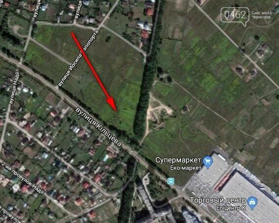 Чернигов стихийный - в городе внезапно появились кладбище домашних животных и свалка, фото-1