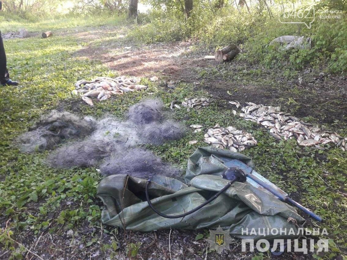 На Чернігівщині затримали бракон'єрів: виловили більше 80 кілограмів риби, фото-2